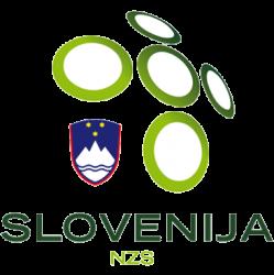 สโลเวเนีย ยู-21